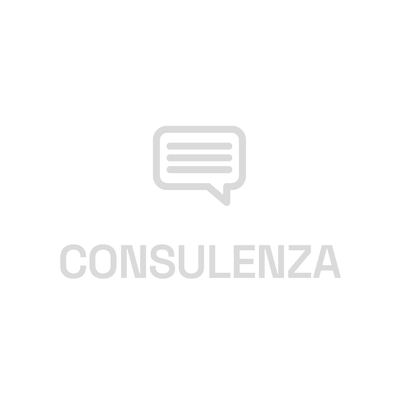 Icone E++_ConsulenzaGrigia