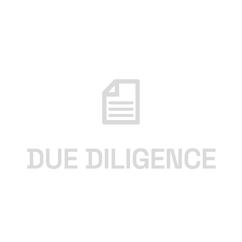 Icone E++_DueDiligence